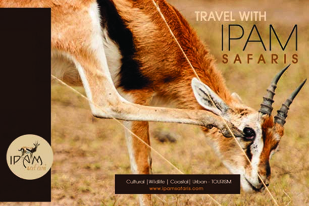 Safaris and Tours